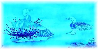blueloons.jpg