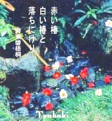 pg3tsubakicamellia.jpg